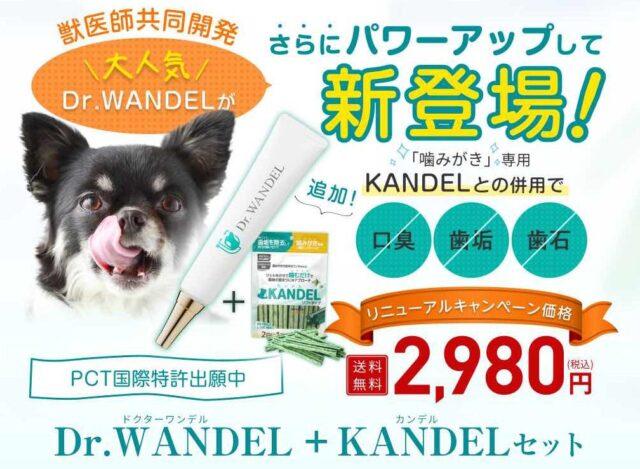 ドクターワンデル KANDEL カンデル