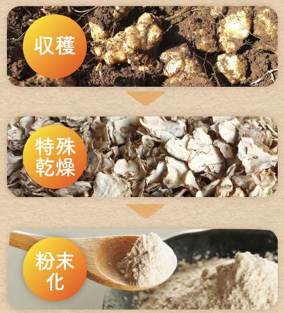 九州産 有機栽培 菊芋