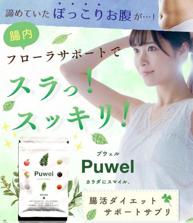 プウェル Puwel