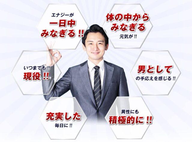 京福堂 プロキオンエールマカ 販売店 価格 最安値