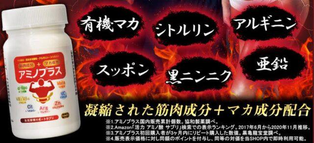黒亀龍宝堂 アミノプラス 特徴