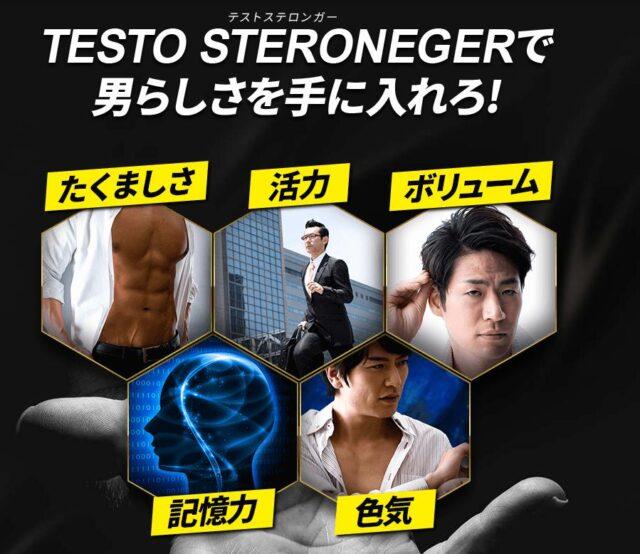テストステロンガー 販売店 価格 最安値